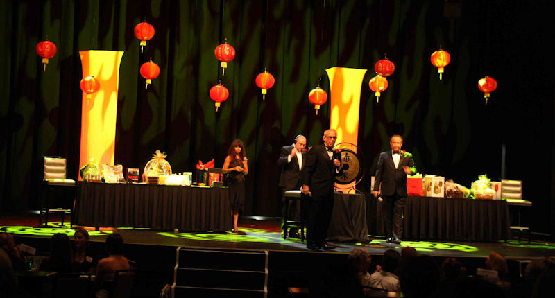 Annual Chinese Auction - 'Year of the Tiger'